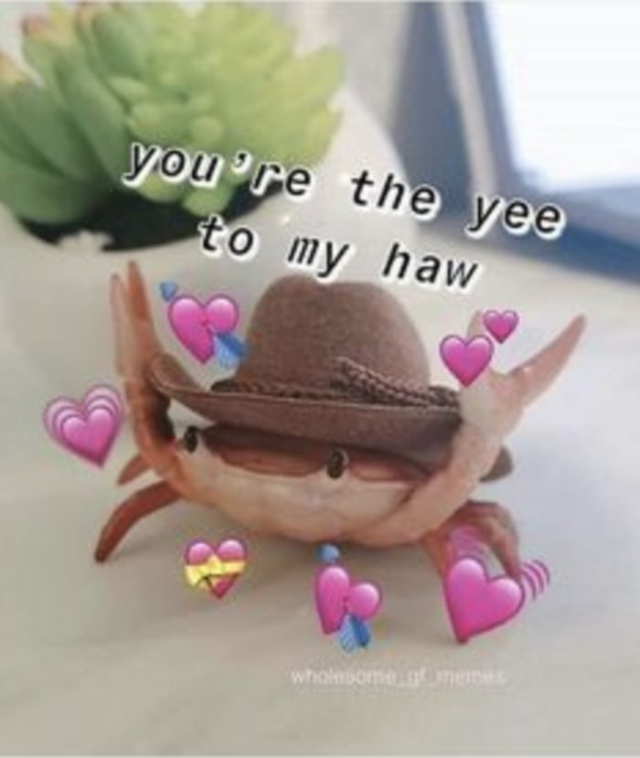 Wholesome Memes - yee to my haw crab
