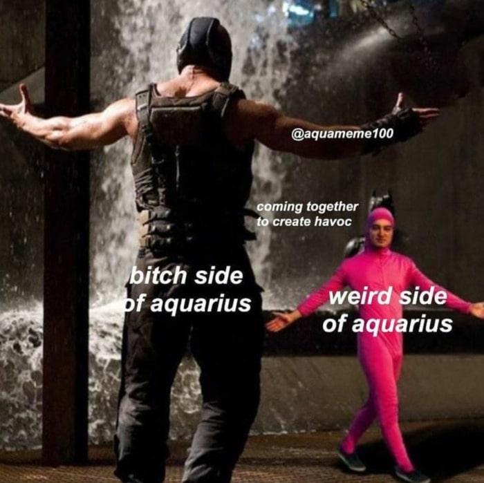 Aquarius Memes - weird side