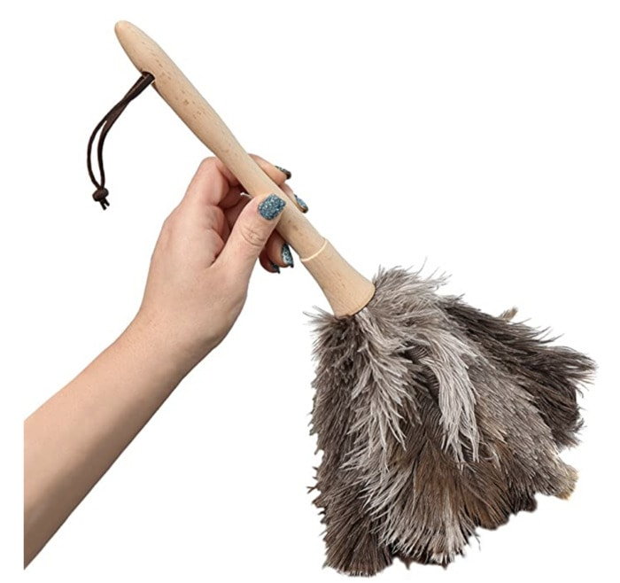 Homemade Sex Toys - Feather Duster