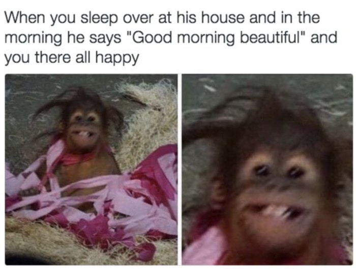 Relationship Memes - sleep over all happy