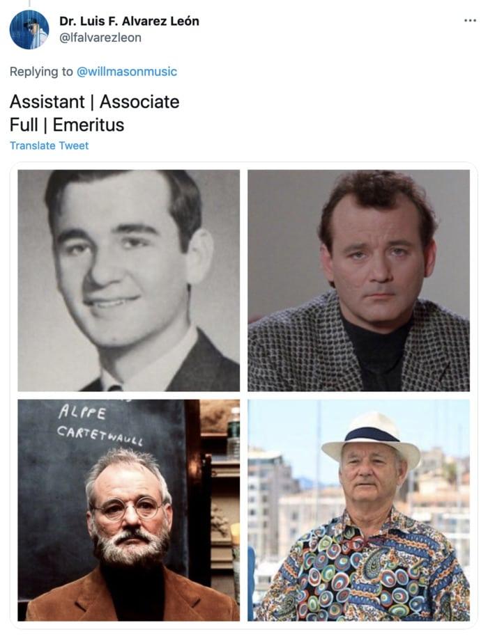 Bill Murray Photo Cannes - Assistant Professor