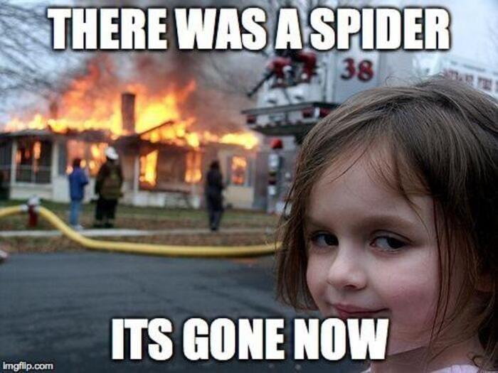 Funny Memes - Disaster Girl