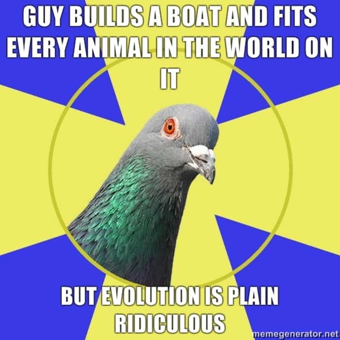 Funny Memes - Religion Pigeon