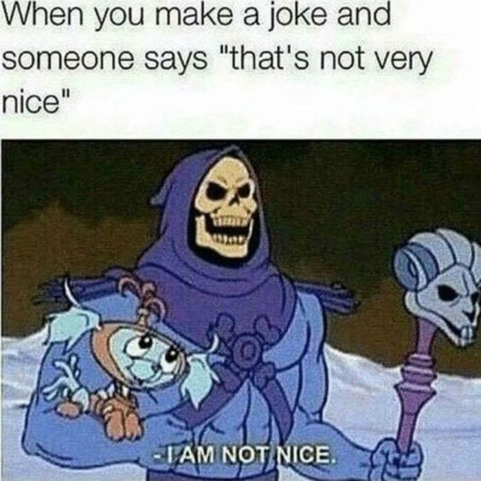 Funny Memes - Skeletor