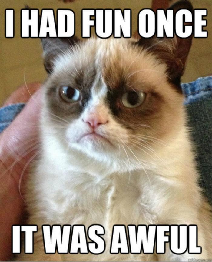 Funny Memes - Grumpy Cat