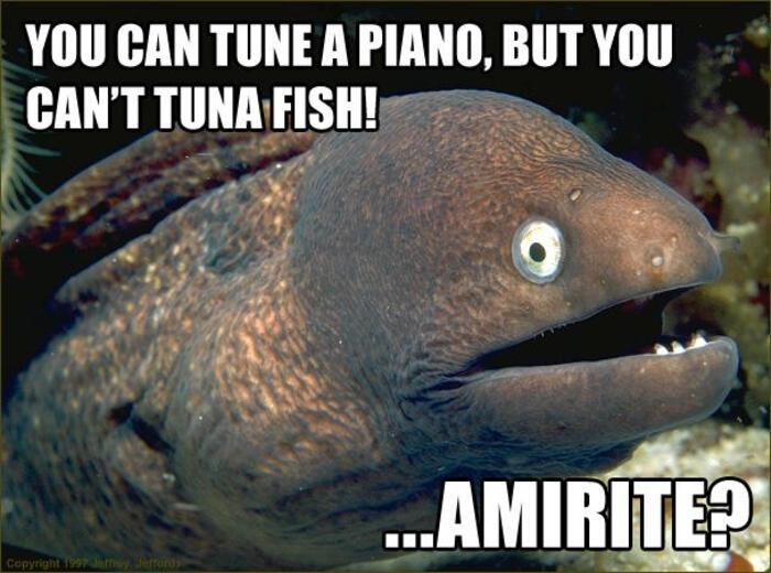 Funny Memes - Bad Joke Eel