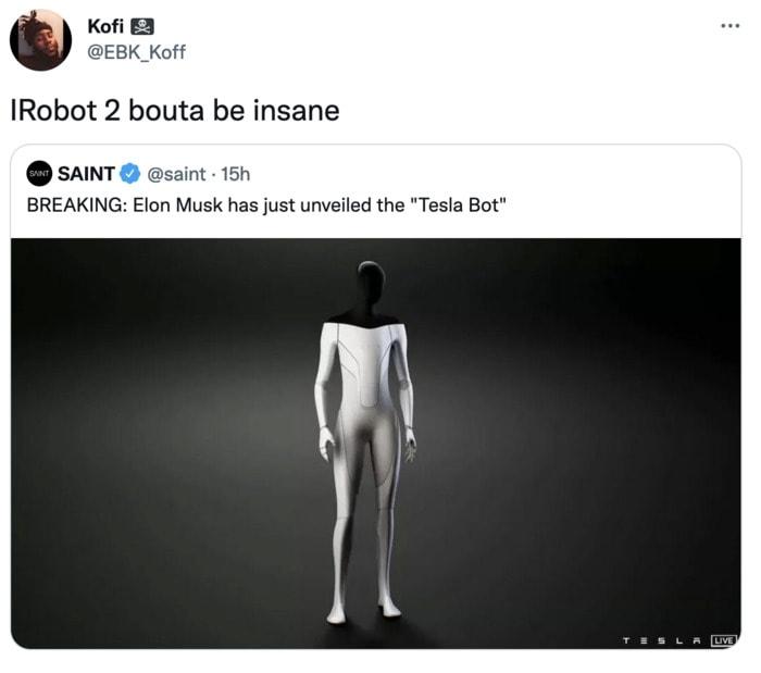 Tesla Bot Memes - iRobot2