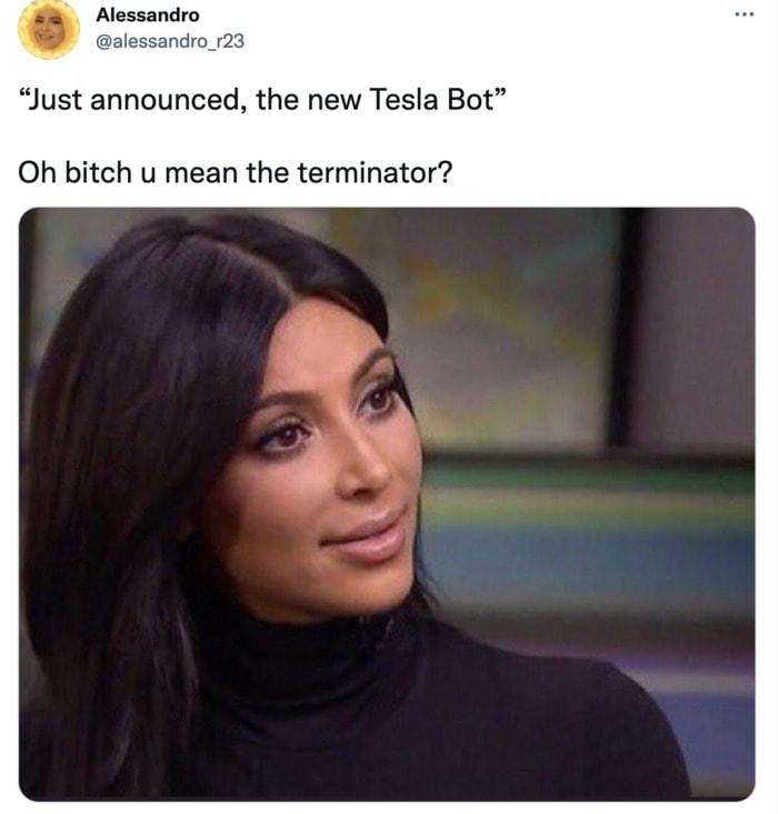 Tesla Bot Memes - Terminator