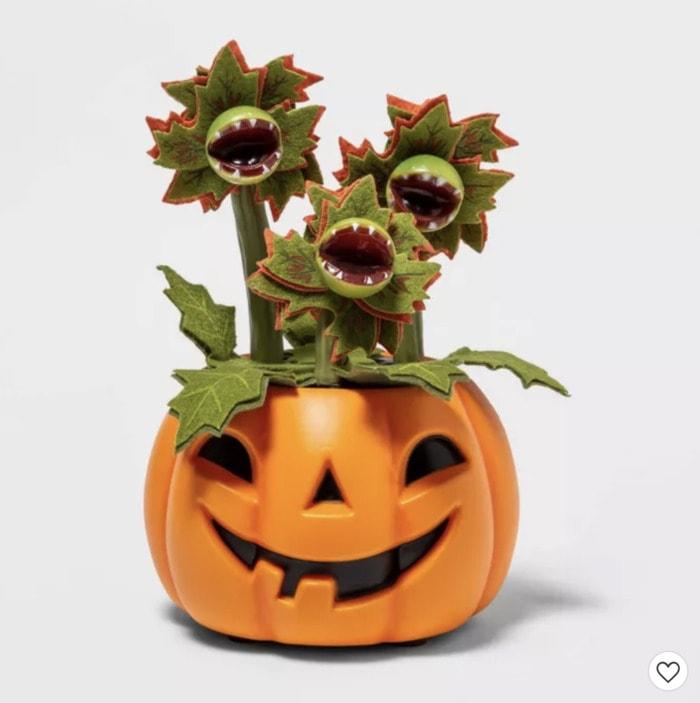 Target Halloween Faux Succulents - Dancing Venus Fly Trap Pumpkin
