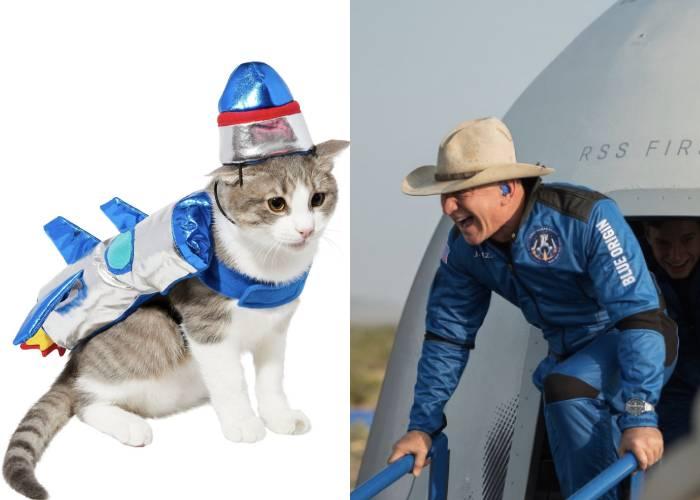 Cat Halloween Costumes - Jeff Bezos and rocketship