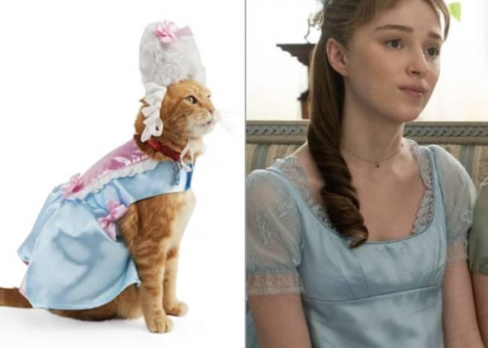 Cat Halloween Costumes - Bridgerton