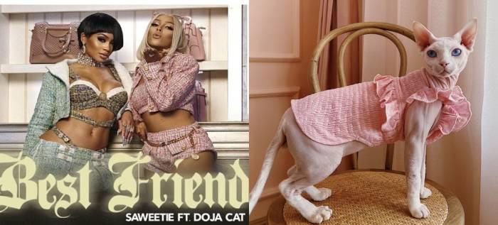 Cat Halloween Costumes - Saweetie Doja Cat best friend